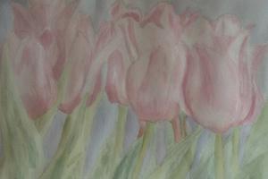 tulips-300x200