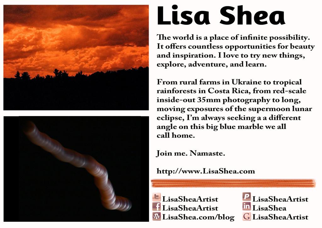 Lisa Shea Artist Postcard