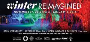 winterreimagined