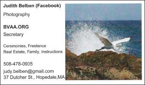 Judy Belben Business Card
