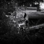 Bob Evans - Abandoned